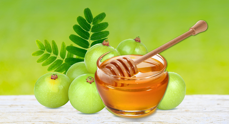 Amla and Honey Together are Amazing For Overall Health