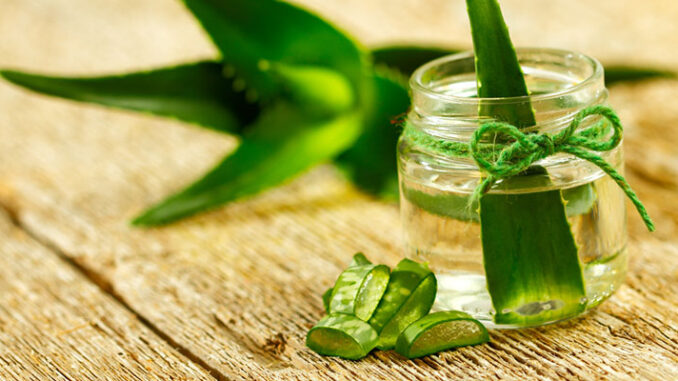 Aloe-vera gel